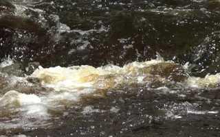Ст. 250 УК РФ – Загрязнение вод: состав преступления, квалификация и ответственность