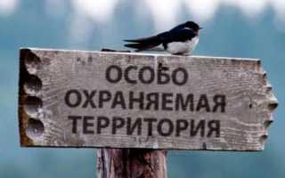 Ответственность за нарушение режима особо охраняемых природных территорий и природных объектов