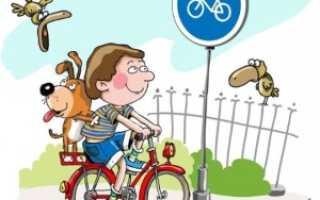 Обязанности велосипедиста при езде по проезжей части и наказание за неё