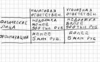 Неуплата налогов – статья 199 УК РФ: состав и ответственность