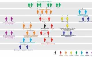 Порядок и особенности принятия наследства по ст. 1152 ГК РФ